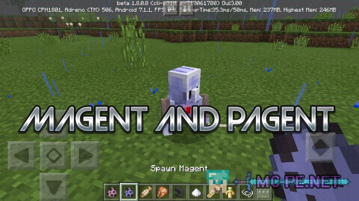 Magent And Pagent