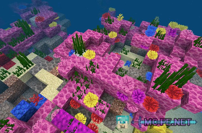 The great coral reef